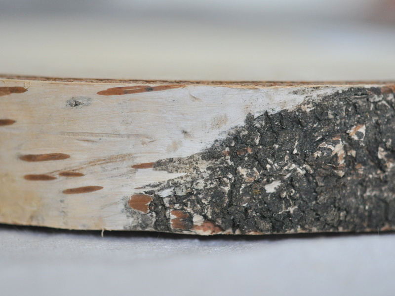 画像2: KNIEJA WOOD 白樺のプレートNo2