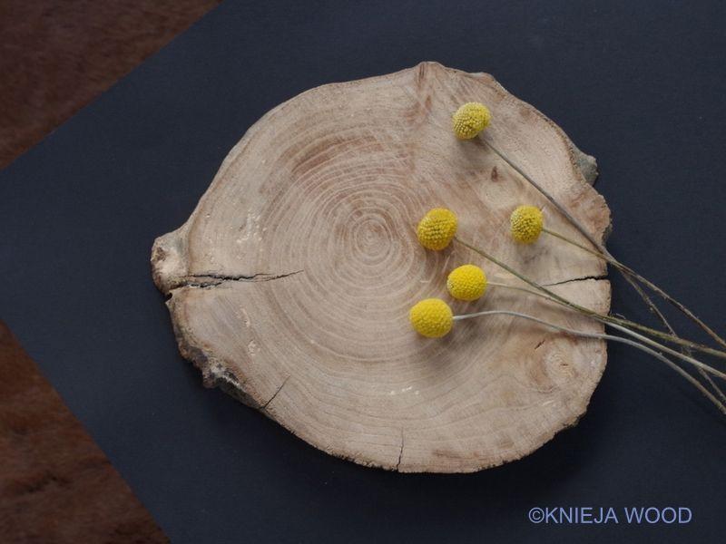 画像3: KNIEJA WOOD 楡のプレートNo3