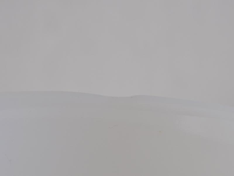 画像3: アルコパル花柄ボウル